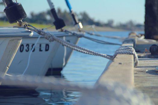 #sealife – auf und an der See!