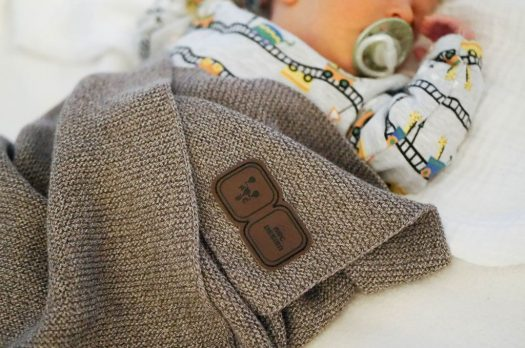 Ein Chihuahua, Baby's Körpertemperatur &die Wohndecke vonLuis