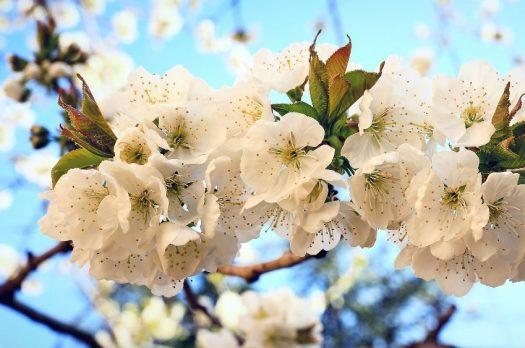 #A wie April, ahnungslos, achtsam &ausgeglichen