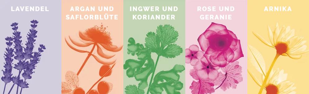L'Oréal-Botanicals-Fresh-Care-Argan-und-Saflorblüte-56